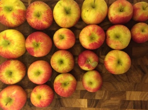 Apples from Hicks Orchard